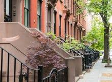 Le trottoir tranquille de rue de voisinage a garni du brownston historique Photo libre de droits
