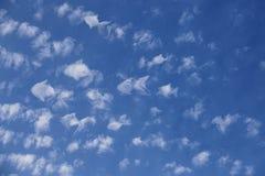 Le troupeau d'imagination des nuages prenant la forme des poissons nage à travers le ciel photographie stock libre de droits