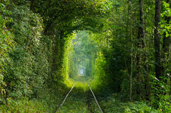 Le tunnel de l'amour sur le chemin de fer Photo libre de droits