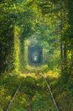 Le tunnel de l'amour sur le chemin de fer Images stock