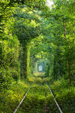 Le tunnel de l'amour sur le chemin de fer photos libres de droits