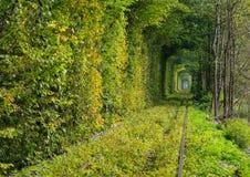 Le tunnel de l'amour sur le chemin de fer Image stock