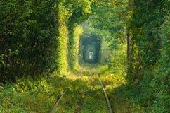 Le tunnel de l'amour sur le chemin de fer Photographie stock libre de droits