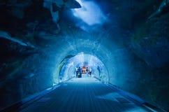 Le tunnel de l'aquarium du Dubaï Image libre de droits