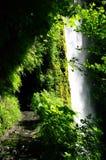 Le tunnel derrière des automnes de tunnel Photo libre de droits