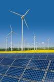 Le turbine di vento ed i comitati solari in un seme di ravizzone sistemano Fotografia Stock Libera da Diritti