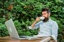 Le type boit le fond de détente de branches de terrasse de café Équipez le hippie barbu font la pause pour le café de boissons et photographie stock libre de droits