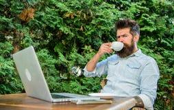 Le type boit le fond de détente de branches de terrasse de café Équipez le hippie barbu font la pause pour le café de boissons et photo stock