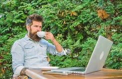 Le type boit le fond de détente de branches de terrasse de café Équipez le hippie barbu font la pause pour le café de boissons et images stock