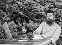 Le type boit le fond de détente de branches de vert de terrasse de café Moment agréable Moment de prise à penser Cassez pour déte photo stock