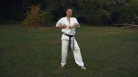 Le type de Karateka s'est engagé dans le karaté de kata sur la clairière pendant le matin de parc de ville banque de vidéos