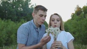 Le type et la fille soufflent des pissenlits banque de vidéos
