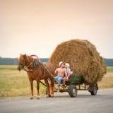 Le type et le baiser de fille sur un chariot Photos libres de droits