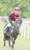 Le ung flickasammanträde på en svart ponny Royaltyfri Foto