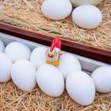 Le uova bianche si chiudono in su Fotografia Stock Libera da Diritti
