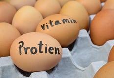 Le uova con la parola protien, vitamina per il concetto dell'alimento Immagine Stock Libera da Diritti