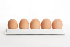 Le uova della gallina nel supporto dell'uovo Fotografie Stock Libere da Diritti
