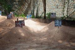 Le uova della tartaruga hanno risieduto in sabbia, all'azienda agricola della tartaruga di mare ed all'incubazione Fotografie Stock Libere da Diritti