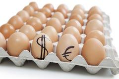 Le uova di Brown in cartone con il dollaro e l'euro cedono firmando un documento il fondo bianco Fotografia Stock