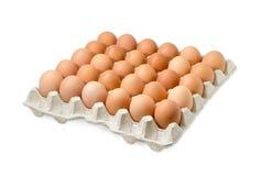 Le uova di Brown nel cartone egg il vassoio su fondo leggero Immagini Stock Libere da Diritti
