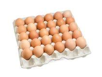 Le uova di Brown nel cartone egg il vassoio su fondo leggero Fotografia Stock