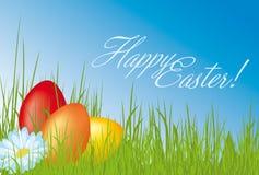 Le uova di Pasqua Desiderano la scheda Immagini Stock Libere da Diritti