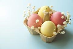 Le uova di Pasqua differenti di colore pastello hanno risieduto e sistemato nella bella composizione con i wildflowers bianchi Ca fotografie stock
