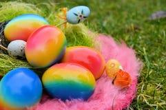 Le uova di Pasqua hanno visualizzato nel nido di un uccello falso fotografia stock