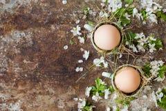 Le uova di Pasqua naturali non colorate in tazze verdi del caffè espresso, concetto felice di pasqua con la molla bianca fiorisce Immagini Stock Libere da Diritti