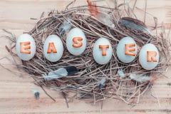 Le uova di Pasqua sulle uova di Pasqua del nido per le vacanze di Pasqua progettano Immagine Stock