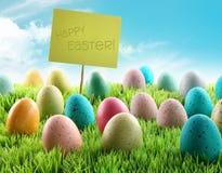 Le uova di Pasqua Variopinte con firmano dentro un campo Fotografia Stock