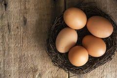 Le uova fresche in uccelli annidano in Li naturale lunatico di retro stile d'annata Fotografia Stock