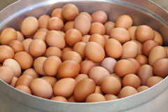 Le uova in grande vaso preparano per bollire Immagini Stock