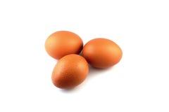 Le uova isolano il fondo bianco Fotografia Stock