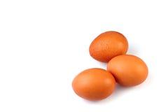 Le uova isolano il fondo bianco Fotografia Stock Libera da Diritti