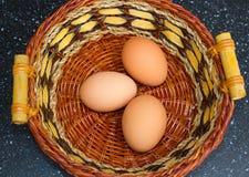 Le uova libere fresche della gamma raccolte appena dai polli del cortile hanno tenuto in un giardino posteriore in Irlanda del No Fotografia Stock