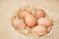 Le uova messe sopra ricoprono di paglia Fotografia Stock