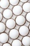 Le uova nel pacchetto, uova bianche dentro ingrassano il fondo bianco Fotografie Stock
