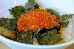 Le uova o il ikura di color salmone deliziose indossano, alimento giapponese Fotografie Stock