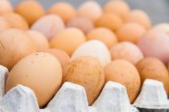 Le uova sono indennità-malattia ed ad alta percentuale proteica Fotografia Stock