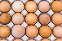 Le uova sono indennità-malattia ed ad alta percentuale proteica Fotografia Stock Libera da Diritti