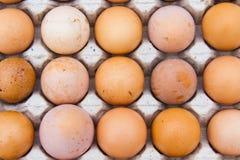 Le uova sono indennità-malattia ed ad alta percentuale proteica Fotografie Stock Libere da Diritti