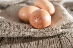 Le uova sono messe sulla borsa Immagini Stock Libere da Diritti