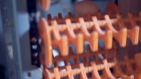 Le uova stanno muovendo lungo la condotta del metallo e stanno ottenendo sollevate dal trasportatore stock footage