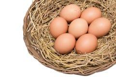Le uova su paglia sul canestro di vimini hanno isolato ed includono il percorso Fotografia Stock Libera da Diritti