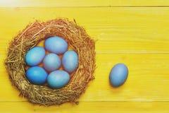 Le uova tradizionali dipinte in paglia tessuta interno blu di colore si avvolgono Immagini Stock Libere da Diritti