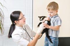 Le vétérinaire écoute chaton de stéthoscope images libres de droits