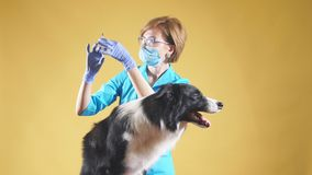 Le vaccin de rage la femme va au vacccine au centre médical clips vidéos