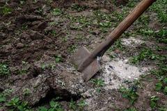 Le vangate della donna di una mano del ` s sporcano e sporcano con una pala Primo piano, Conce Immagine Stock Libera da Diritti