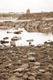 Le varech de château de Ballybunion a couvert la vue de roches Image stock